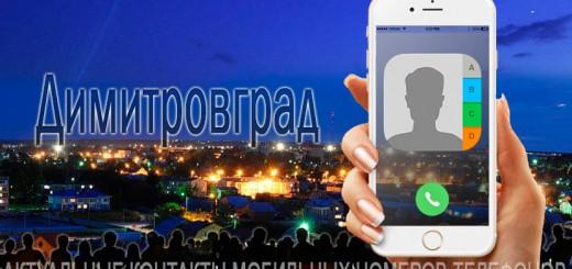 База мобильных телефонов города Димитровграда