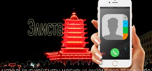 База мобильных телефонов города Элиста