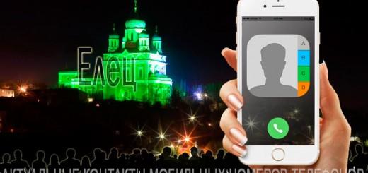 База мобильных телефонов города Елеца