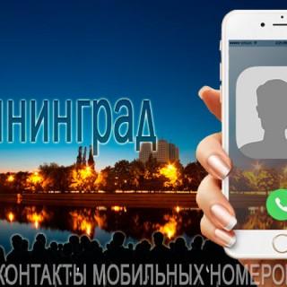База мобильных телефонов города Калининграда