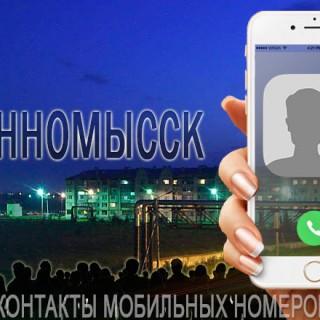 База мобильных телефонов города Невинномысска