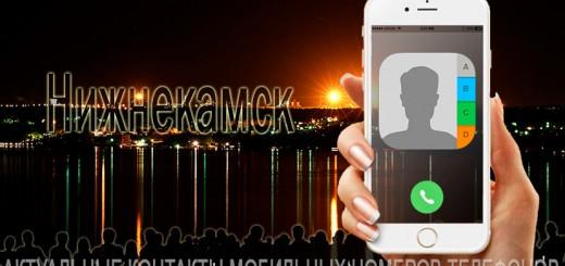 База мобильных телефонов города Нижнекамска
