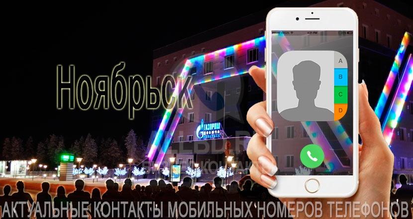 База мобильных телефонов города Ноябрьска