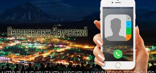 База мобильных телефонов города Петропавловска-Камчатского