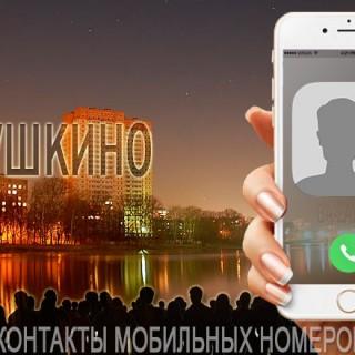 База мобильных телефонов города Пушкино