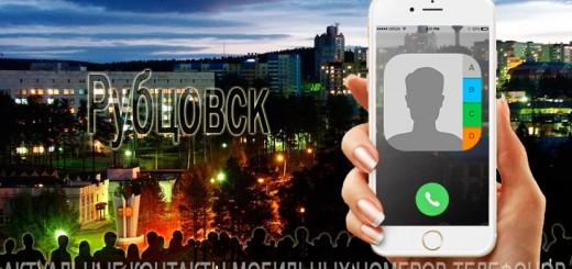 База мобильных телефонов города Рубцовска