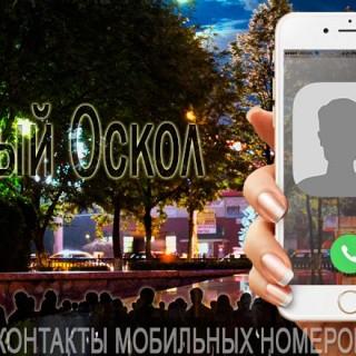База мобильных телефонов города Старого Оскола