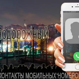База мобильных телефонов города Железнодорожного